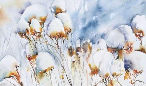 Schönheiten der Winternatur