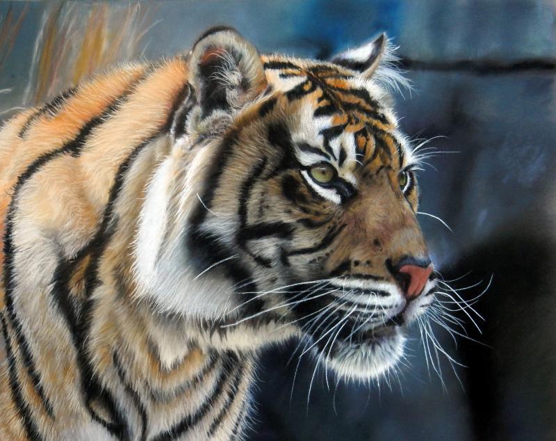 Tierportrait - Faszination der realistischen Malerei mit Pastellen
