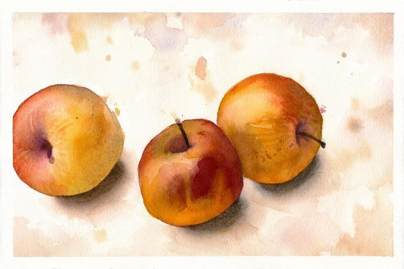 Ganz einfach malen lernen - Stillleben mit Äpfeln in Aquarell