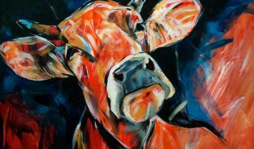 Kühe - spontan und locker!