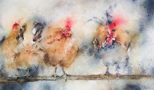 Federvieh – Huhn, Henne und Hahn