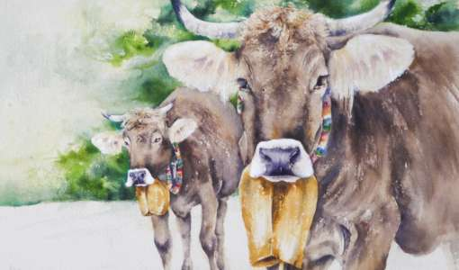 Kühe im Aquarell
