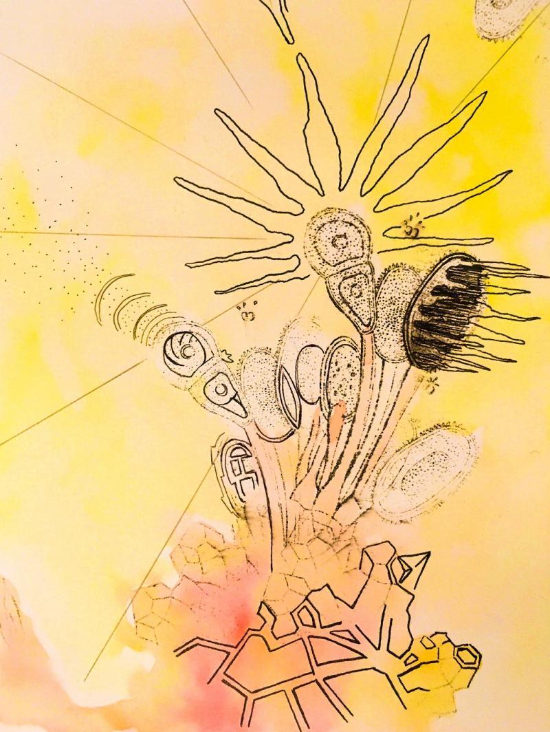 **Surreale Zeichnung: Frottage, Collage und phantastische Begegnungen auf Papier