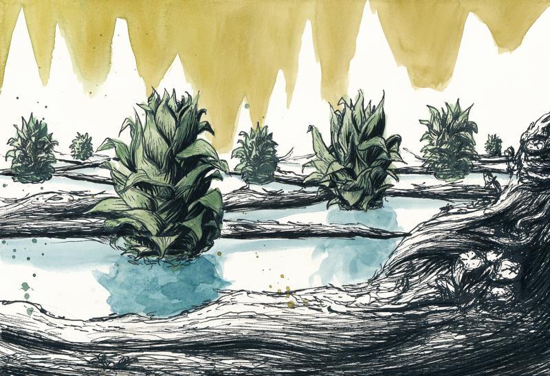 """""""Fund-Stücke"""" – Bildfindung durch natürliche Strukturen"""