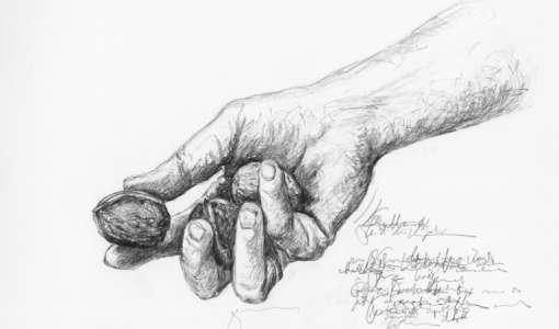 Einsteigerkurs: Hände zeichnen