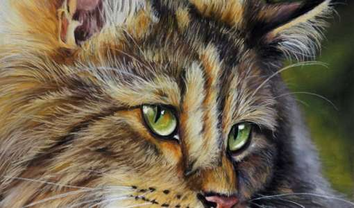 Tierporträt - Faszination der realistischen Malerei mit Pastellen