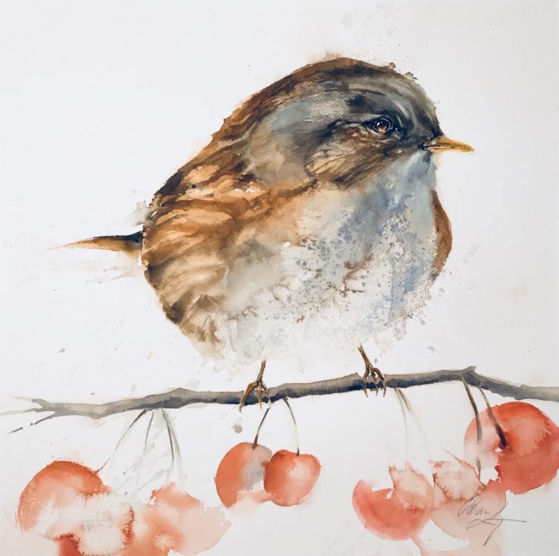 Kleine Wintervögel mal ganz groß!